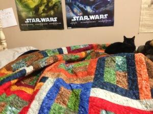 quilt with cat
